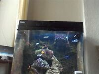 full marine set up red sea 130d tank &stand