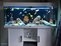 Aquarium, fish tank Fluval Rio 300 l