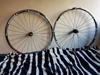 Bike rims Ambrosio