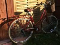 Pendleton Somerby 19- red