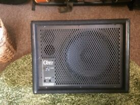 Carlsbro Alpha EM12 200W Passive Stage Wedge Monitor.