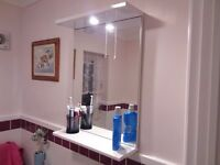 BATHROOM MIRROR UNIT WITH INBUILT HALOGEN LIGHT AND SWITCH AND SHELF##BRAND NEW AND FULLY BOXED