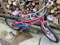 Girls pink Gary fisher bike with stabilisers