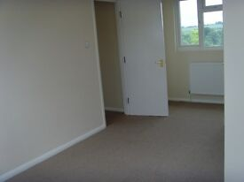 Newly refurbished 3/4 bed very large house.