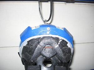 Bike Helmet Bird Feeder London Ontario image 5