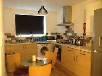 Beautiful 3 bed serviced apartment for short let