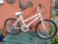 STARLITE TOWNSEND CYCLES GIRLS MOUNTAIN BIKE