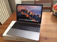 Macbook 12-inch, 1.1Ghz Core Mobile,8Gb RAM,256GB SSD. Immaculate.