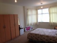 Large, nice & clean Room Available for professional person