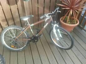 "24""btwin girls mountain bike"