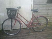 1964 classic/vintage hercules ladies 3 speed bicycle - Town bike with basket
