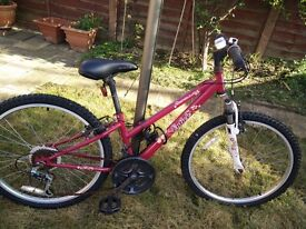 "Entice bike. Only used twice. 24"" ages 10+."