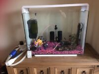 Superfish home80 tank with accessories
