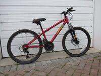 "Boy's Halfords Apollo ""Crank"" mountain bike"
