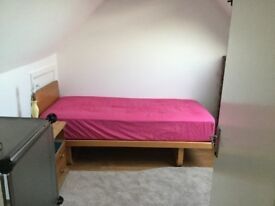 A spacious south-facing en-suite bedroom near the University of Reading
