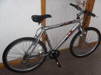 gents mountain bike raleigh firefly