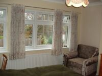 Double room, large, suit quiet, easygoing professional male, non-smoker. Tranquil area.
