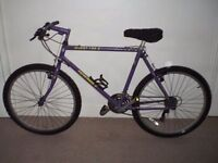 """Muddy Fox Pathfinder 21.5"""" Mountain Bike (BRAND NEW tyres)(will deliver)"""
