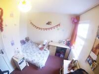 Turnpike Lane Double ROOM!!! MOVE IN TODAY! ROOM TO Let!