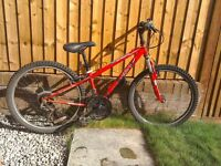 Mountain Bike - Apollo XC24 boys