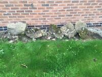 Rockery Stones free to collect