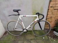 Fixie / fixed gear / single speed / track bike / bike