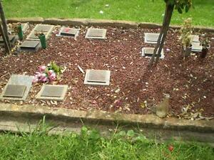 Cremation plot Pine Grove Cemetery Pendle Hill Parramatta Area Preview