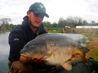 Carp Fishing Specimen Lake up to 52lbs 24 Hour sessions £40 overnight fishing