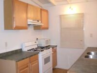 2 Double Bed 2 Bath flat on Lavender Hill SW11