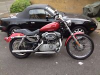 harley davidson 883c custom low mileage good condition carburetor model