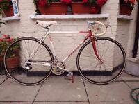 Handbuilt Nigel Dean Traithlo Racer Bike, Reynolds 531 Competition Frame
