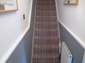 STAIR CARPET AND UNDERLAY