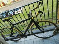 Specialized Fixie / Single Speed Bicycle (alu/carbon) London
