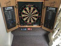 Professional dart board and accessories