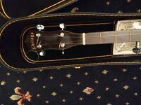 5 string banjo + case