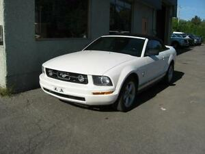 Ford Mustang Cabriolet - Convertible  2007