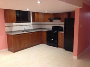 Newly built basement for Rent with Separate Enterance