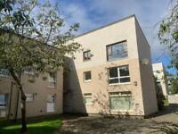 FLAT TO RENT - 2 Bedroom flat Elm Drive, Cumbernauld -£475pcm