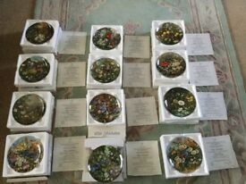 Set of 12 decorative floral plates with display shelves