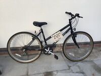 Ladies Falcon Eclipse bike 26 in wheels 17 in frame 15 gears Eastwood Nottinghamshire