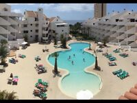 Fab apartment to rent on paloma beach in Los cristianos in Tenerife