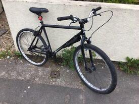 Radio hybrid bike