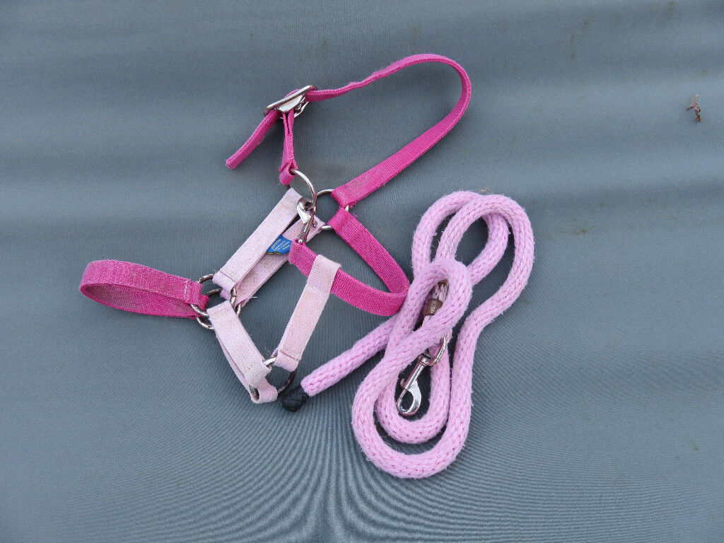 Pink headcollar and lead rope. Pony/shetland size.
