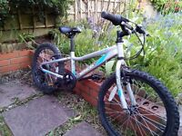 Silver-blue Saracen's Swift bike, 20-inch wheels. Suitable for 5-9 year old. £60 ono.