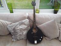 Luna moonbird guitar