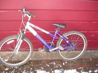 Magna Vienna 18 speed girls / ladies bike . 15 inch frame. Knobbly tyres . Front suspension