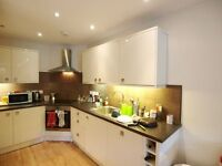 A large modern 3 bedroom 2 bathroom ground floor flat with private garden short walk to FP tube