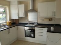 KITCHEN FITTER EXPERIENCE LAMINATE FLOOR HOUSE MAINTENANCE