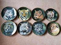 8 x collectors fine porcelain plates - limited edition