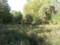 Private, Treed and Just minutes out of Lac La Biche - REDUCED!